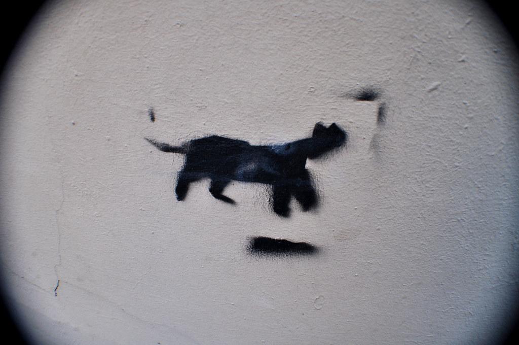 Chat Noir (1)