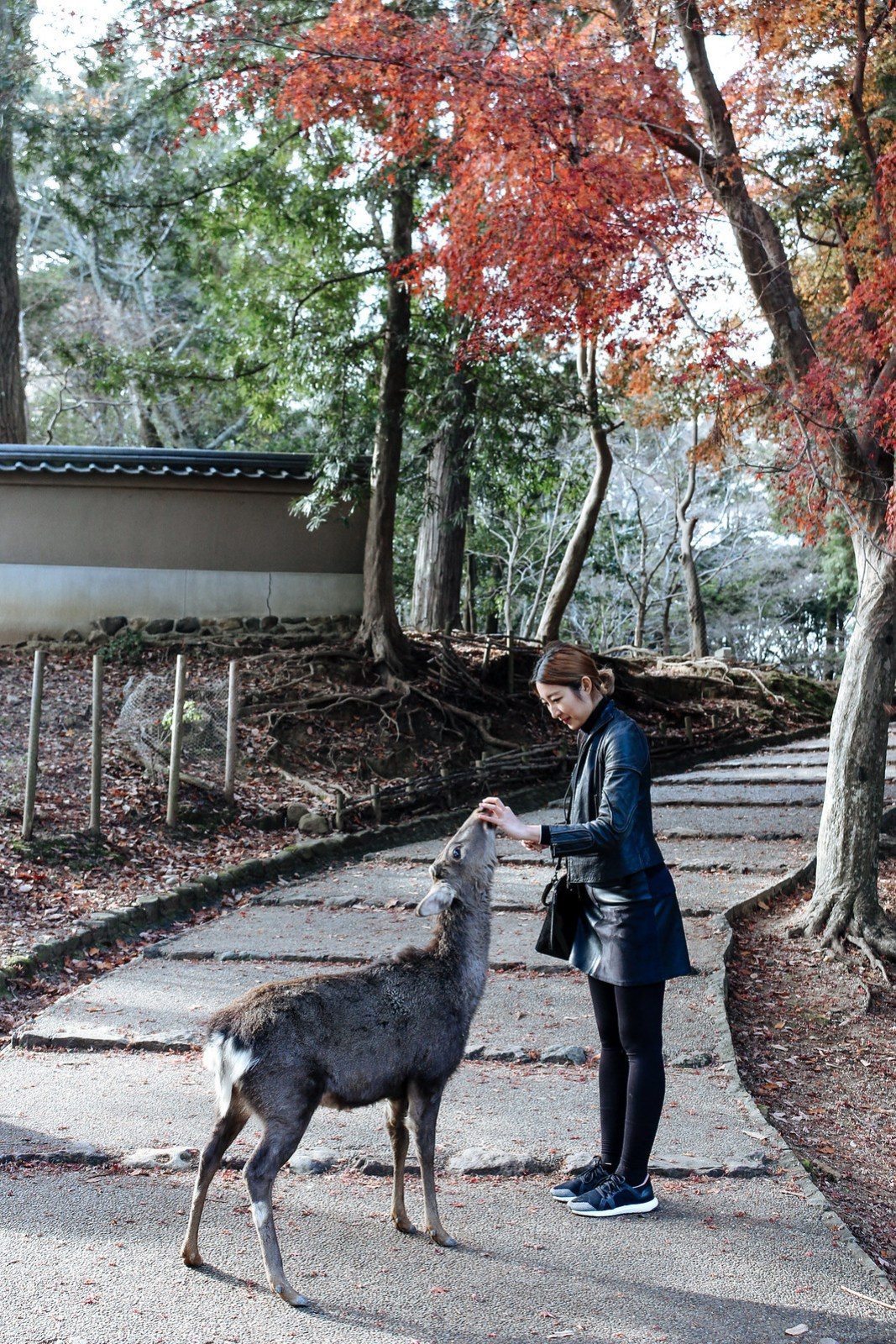 Japan Travel - Kisses,Vera-1