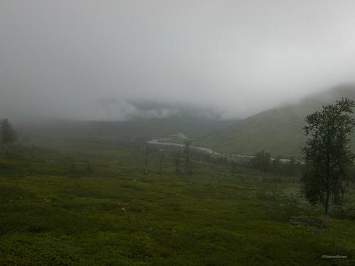 Misty morning in Bjøllådalen