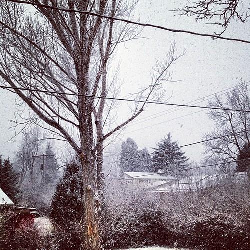 It's starting to snow by @MySoDotCom