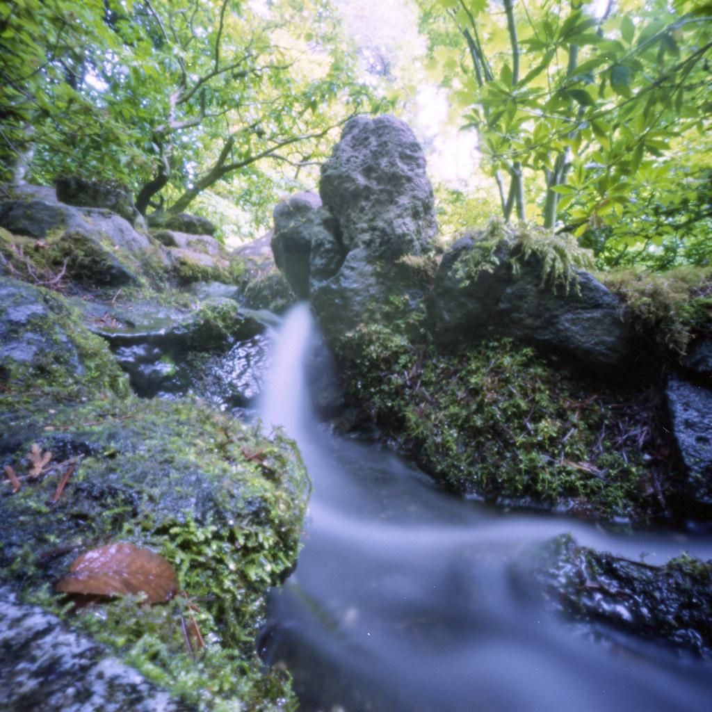 Japanese Gardens, Portland Oregon