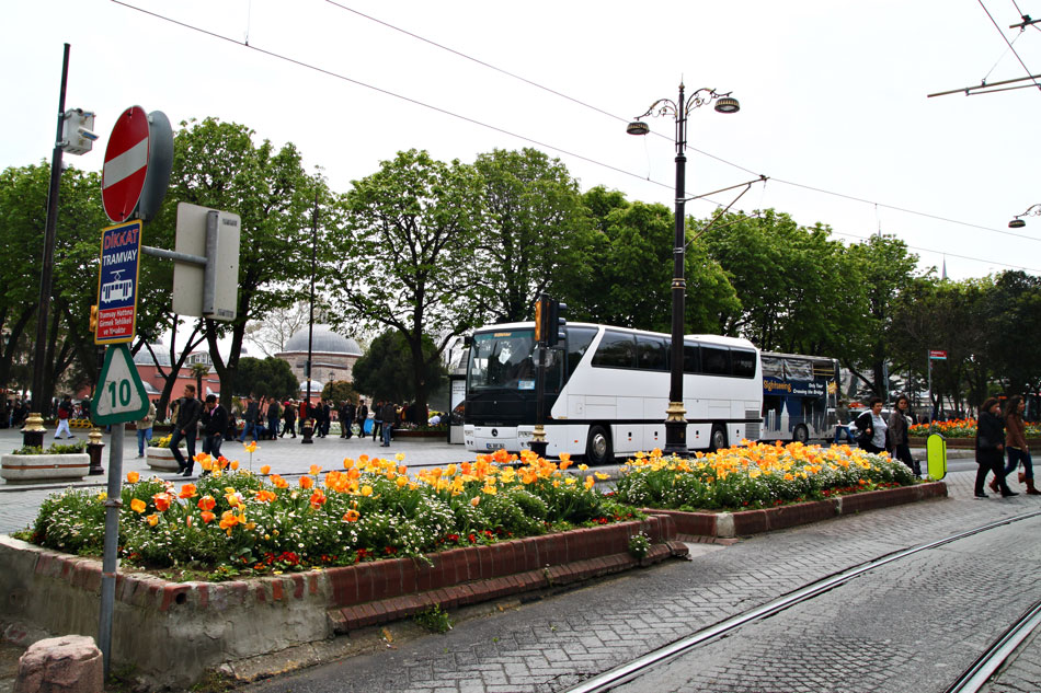 Istanbul Tulip Festival - Street