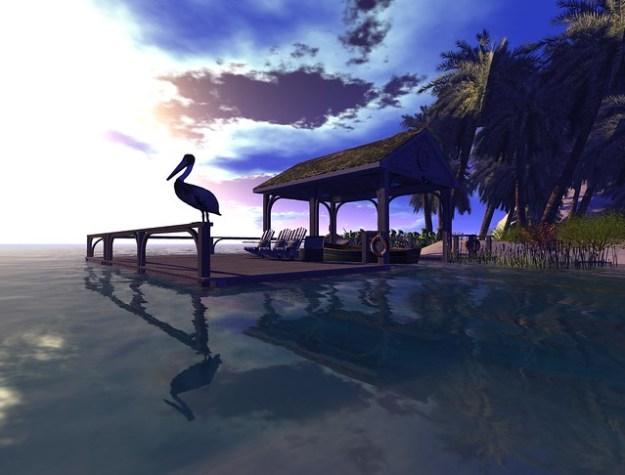 Carpe Diem Surf (1)