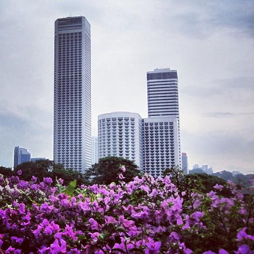 View towards Raffles City Centre #singapore by @MySoDotCom