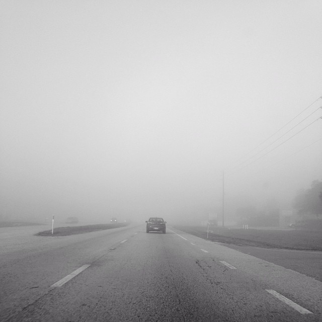 Driving into the fog #Orlando #blackandwhite #fog #road #morning