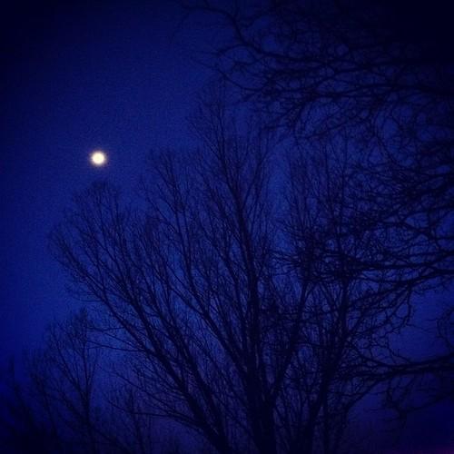 A winters #moon by @MySoDotCom