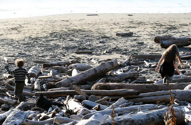 driftwoodkids
