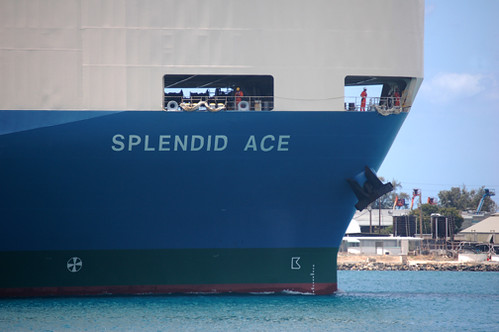 Splendid Ace bow