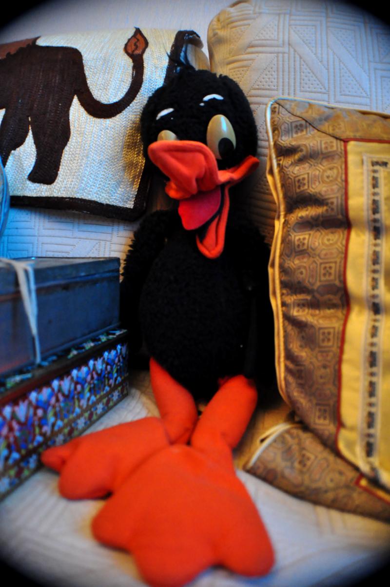Daffy Duck Fatigué