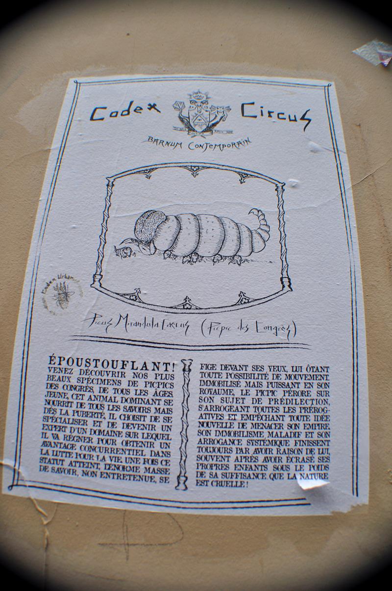 Codex Circus_Picpic des Congrès