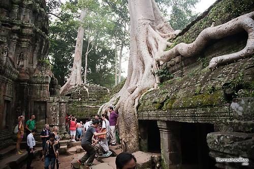 Ta Prohm (Camboya)