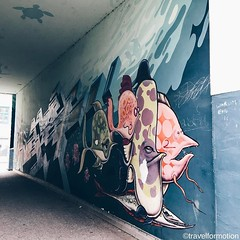 #streetart #art #fish #hamburg #hamburg_de #ahoihamburg #igershamburg #visithamburg #explorehamburg #speicherstadt #igershh #welovehh #igersgermany #germany #guardiantravelsnaps #vsco #vscocam #wall