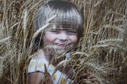 Every harvest kid has a timeline of wheat photos.