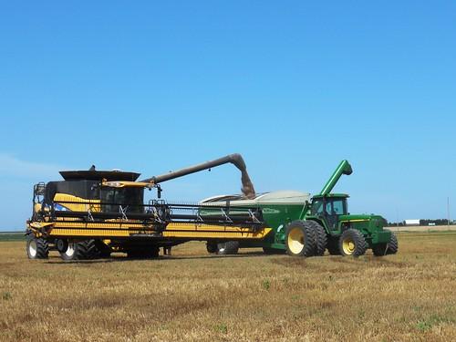 Unloading on the grain cart