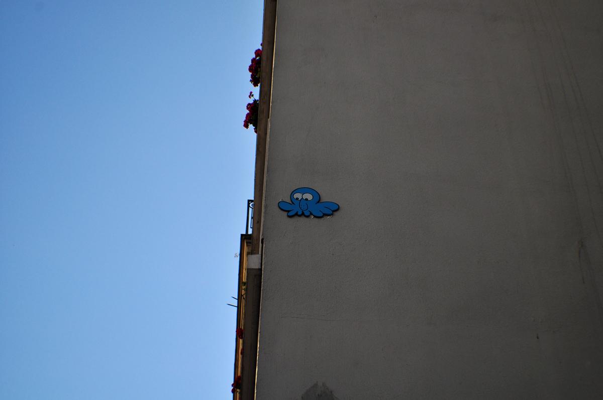 GZUP Edika bleu