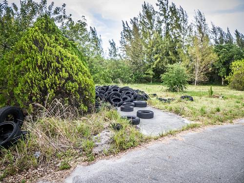 Illegal Tire Dump-006