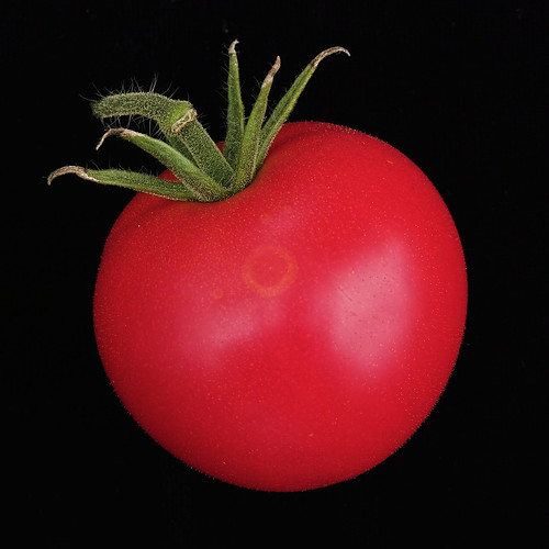 DP2M3705  Tomato from the Dacha Garden