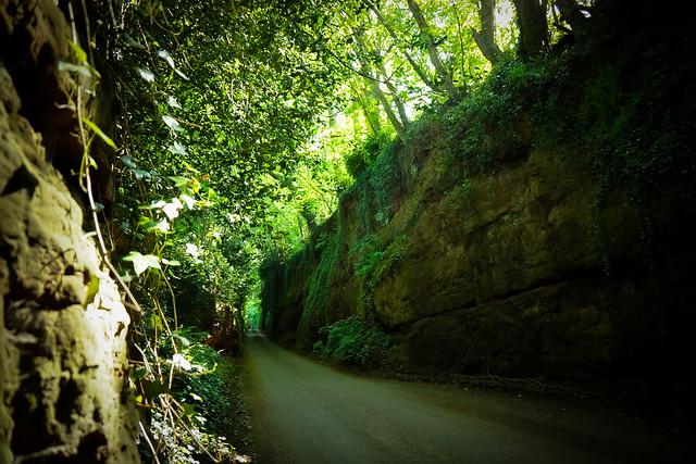 Devon backroad