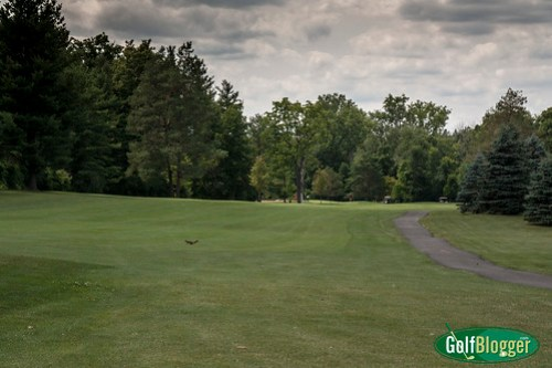 Stony Creek Metropark Golf Course-2174