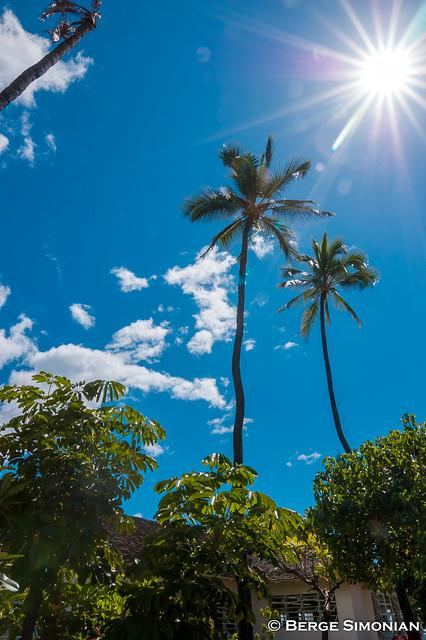 Maui_17_20080322