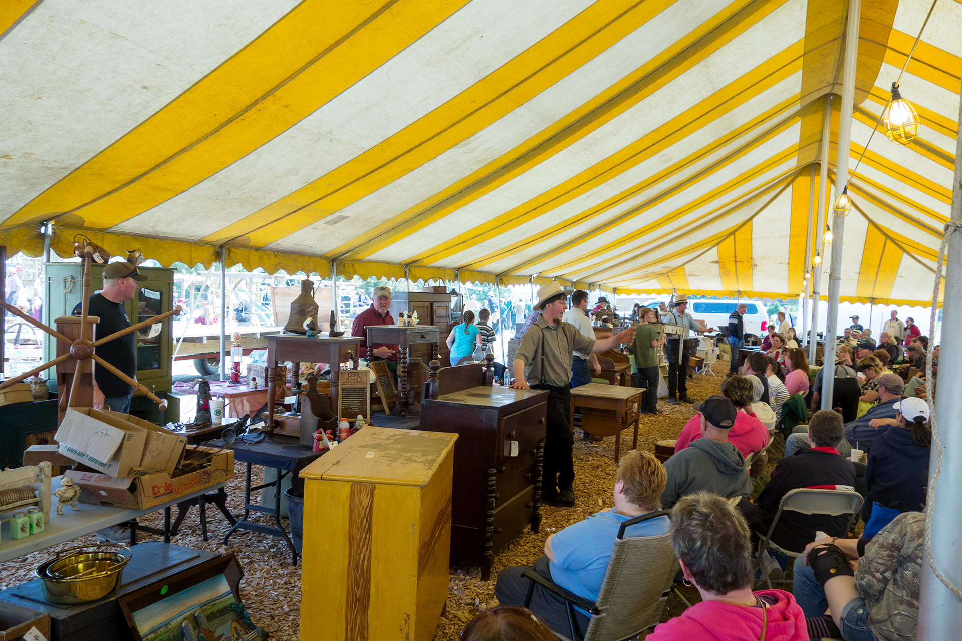 The action in the Antique tent at the Mud Sale.