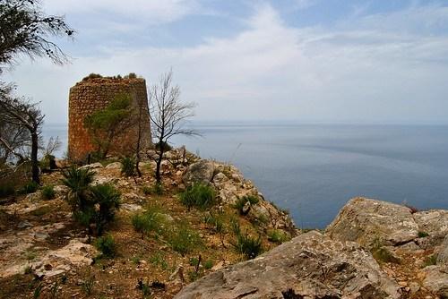 Excursión a Sa Torre Nova ( Andratx)