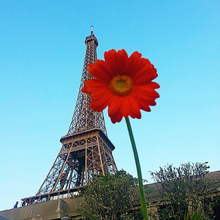 It's almost officially Summer! BEST SEASON IN PARIS!  #parisjetaime come play my blog giveaway  http://wp.me/p4BAYD-2eq