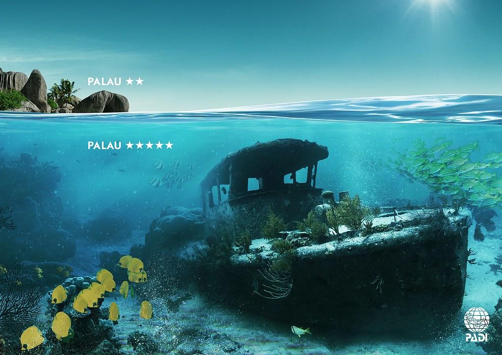 Padi - Palau