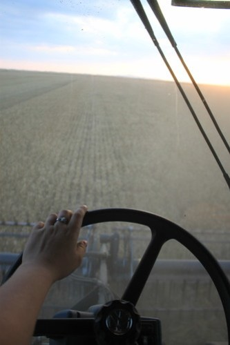 Sunset from a combine cab, nothin' better.