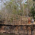 03 Viajefilos en Laos, Bolaven Plateau 138