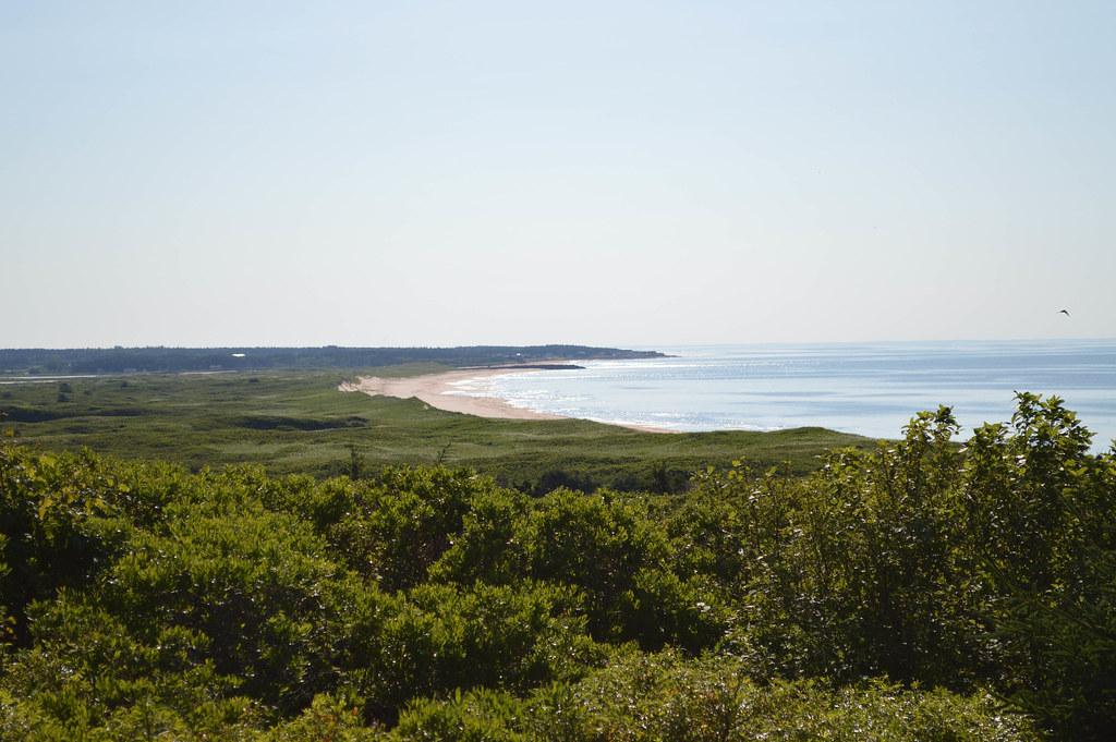 Links and Crowbush Cove - Behind #11 teebox