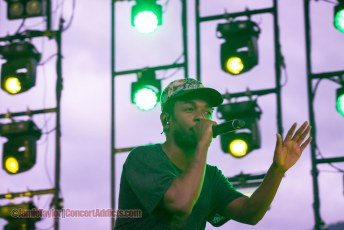 Photos | Pemberton Music Festival - July 18-20 2014