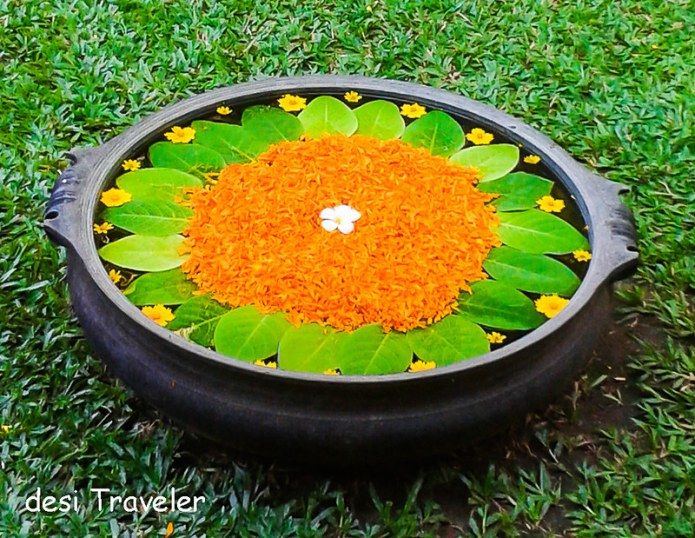 Varpu with marigold flower petals