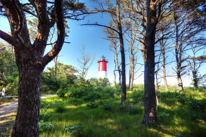 Nauset Light peeking through the woods.