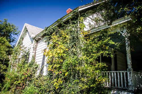 Wardlaw House-004