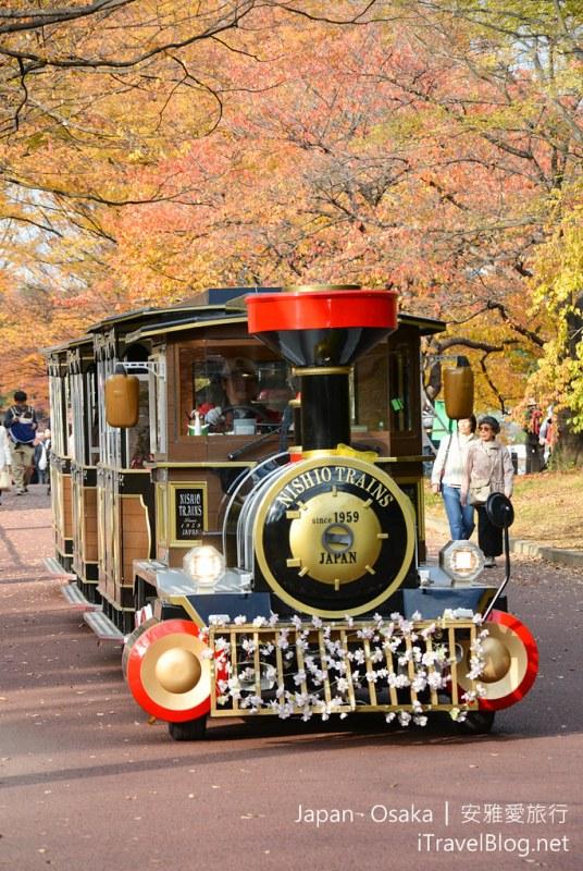 大阪赏枫 万博纪念公园 20