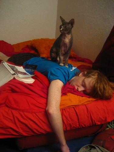 Photo d'Uthello sur mon dos pendant que je dors