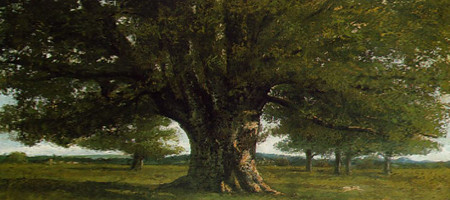 I couldn't think of an visual example of gameplay, so you have pictures of my favourite trees. This is the Oak, the solid tree.