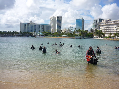 Divers heading out to clean the sea