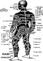 Marquesan tattooing (rear), by Von de Steinen,...