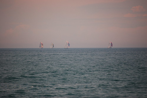 Sails on the Horizon