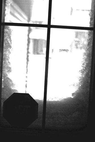 snowy window