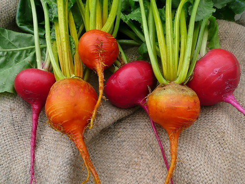 Golden and red beets by Chris and Jenni, on Flickr