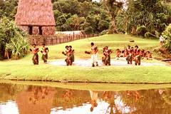 Chaque jour commence à Fidji!