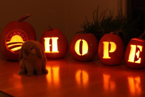 hop for hope!