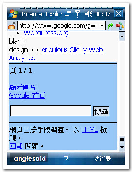 google-angie-06.jpg