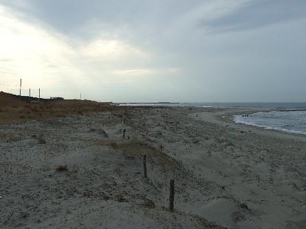 冬の新潟海岸