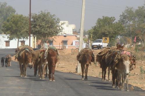 Khajuraho 路上1-5鄉下