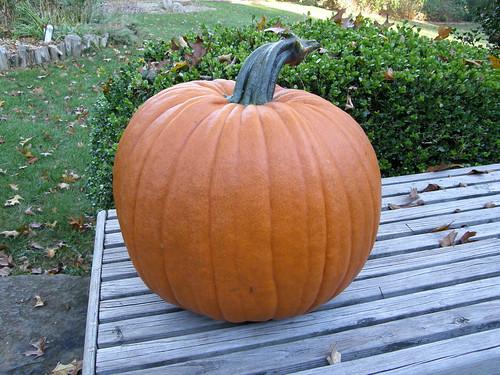 Nuestra calabaza para Halloween