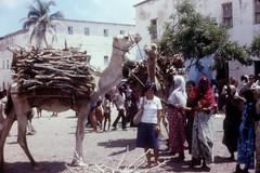 somalia-days